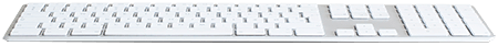 Apple Keyboard Vit